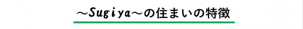 特徴.JPG